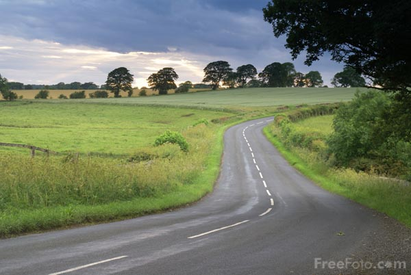 9907_06_24---Country-Road_web